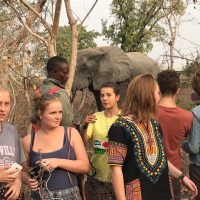 Exploring Diverse Cultures in Ghana