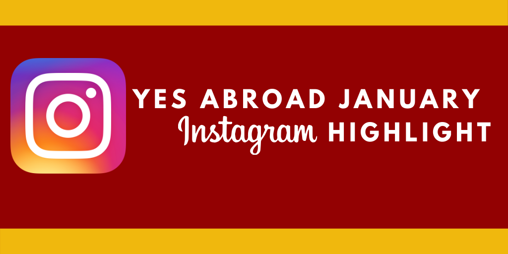 Yes Abroad Insta Graohic